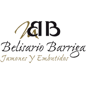 Belisario Barriga